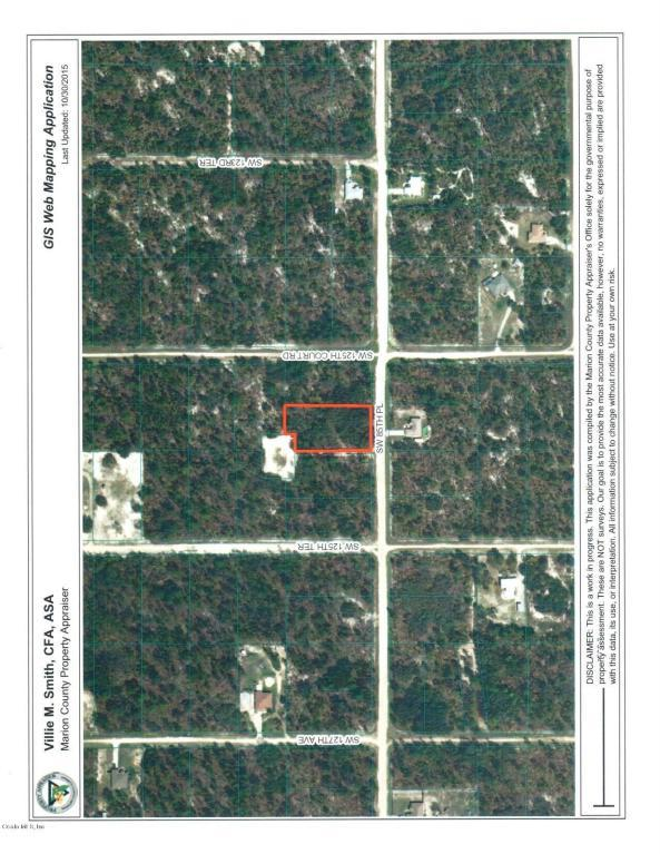 00 SW 85 Th Place, Dunnellon, FL 34432 (MLS #534607) :: Pepine Realty
