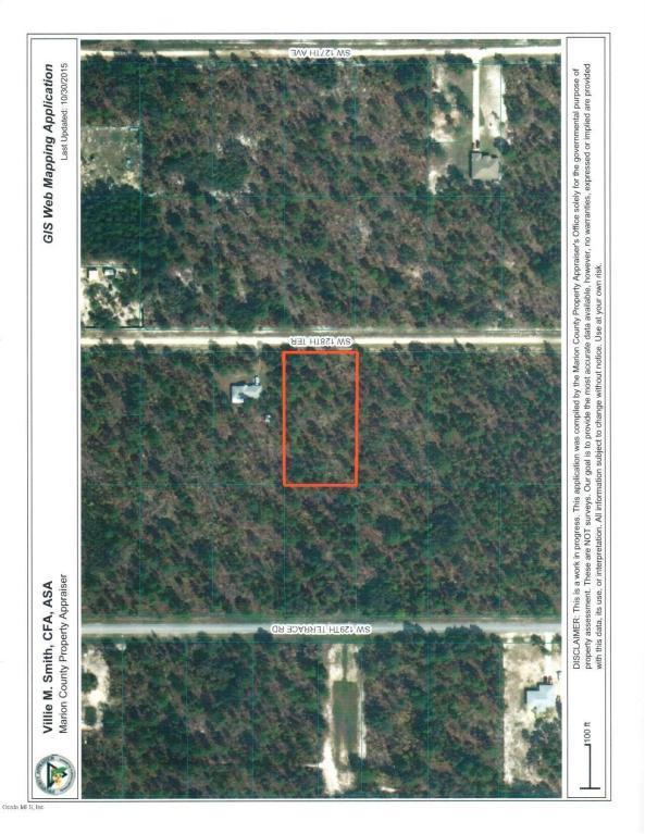00 SW 128th Terrace, Dunnellon, FL 34432 (MLS #534628) :: Bosshardt Realty