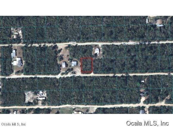 0 NE 233 Place Null Road, Fort Mccoy, FL 32134 (MLS #534835) :: Realty Executives Mid Florida