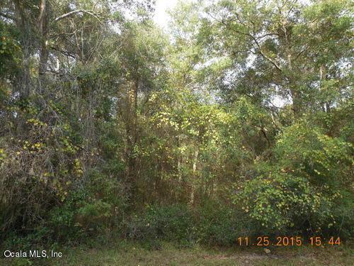 00 SE 46th Loop, Keystone Heights, FL 32656 (MLS #534997) :: Realty Executives Mid Florida