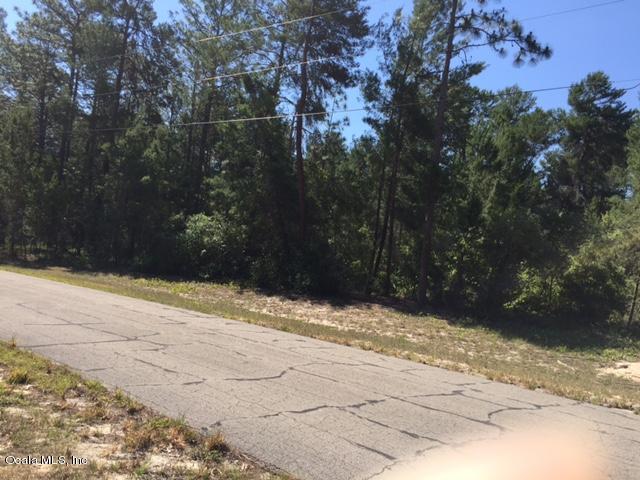 0 SW 38th Terrace Rd Road, Ocala, FL 34473 (MLS #535055) :: Bosshardt Realty