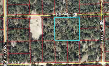 10670 NE 77th Place, Bronson, FL 32621 (MLS #535210) :: Pepine Realty