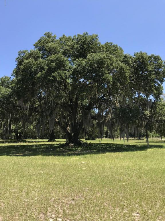158 SE 158th Terrace, Weirsdale, FL 32195 (MLS #535715) :: Bosshardt Realty
