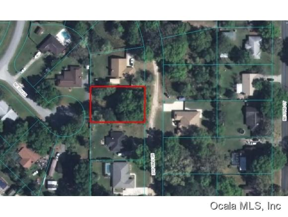 500 NE 52nd Avenue, Ocala, FL 34470 (MLS #536050) :: Bosshardt Realty