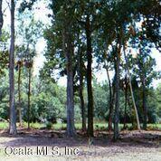 9069 SW 190th Avenue Road, Dunnellon, FL 34432 (MLS #536225) :: Bosshardt Realty