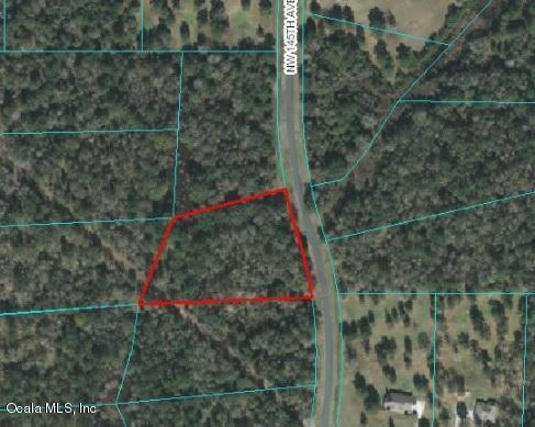 TBD NW 145th Avenue, Williston, FL 32696 (MLS #536344) :: Bosshardt Realty
