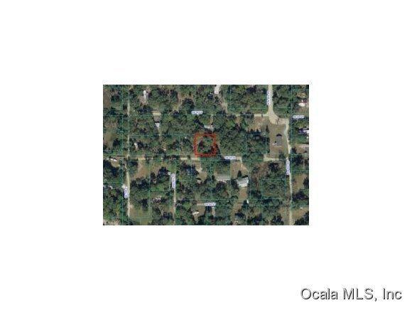 18915 SE 95th Place, Ocklawaha, FL 32179 (MLS #537323) :: Bosshardt Realty