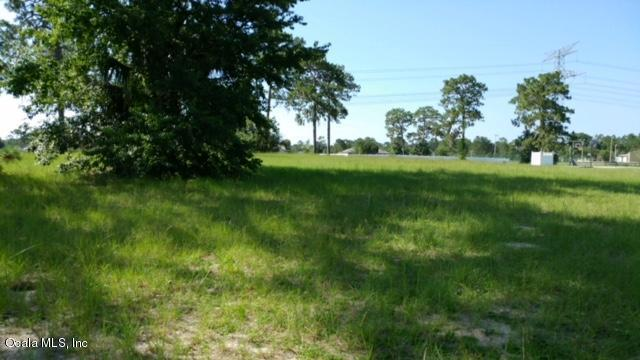 5615 NE 62nd Court Road, Silver Springs, FL 34488 (MLS #538243) :: Realty Executives Mid Florida
