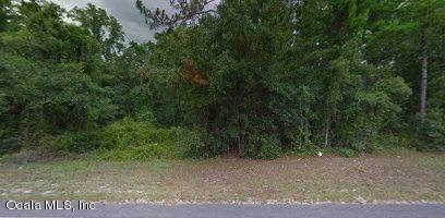1026 Highway 17, SATSUMA, FL 32189 (MLS #539464) :: Bosshardt Realty