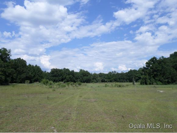 17ac-20051 SE 32nd Place, Morriston, FL 32668 (MLS #540939) :: Pepine Realty