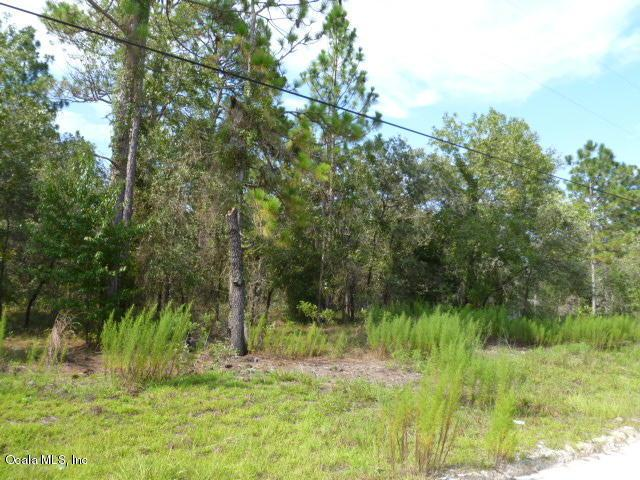 TBD NE 2nd Place, Williston, FL 32696 (MLS #541333) :: Bosshardt Realty
