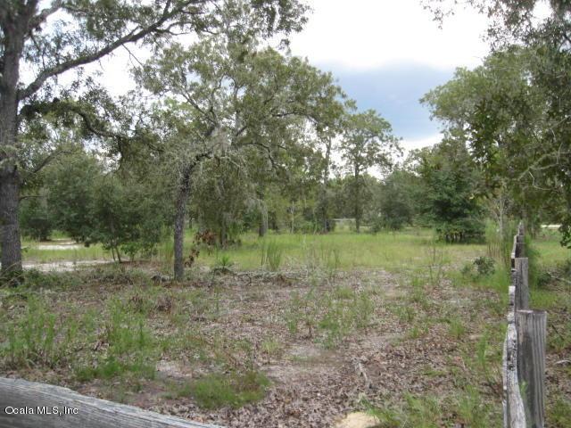 13290 SE 103rd #12, Dunnellon, FL 34431 (MLS #543503) :: Pepine Realty