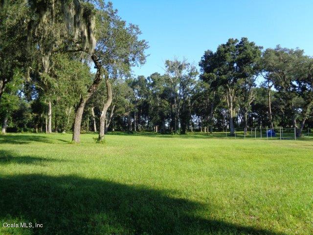 0 SE Hwy 42, Summerfield, FL 34491 (MLS #543600) :: Pepine Realty
