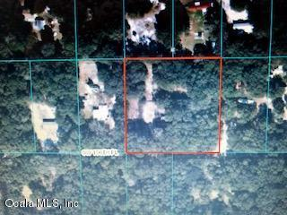 10375 SW 156th Place, Dunnellon, FL 34432 (MLS #544776) :: Thomas Group Realty