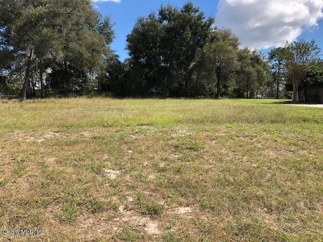 333 Woodland Trail, Lady Lake, FL 32159 (MLS #544953) :: Realty Executives Mid Florida