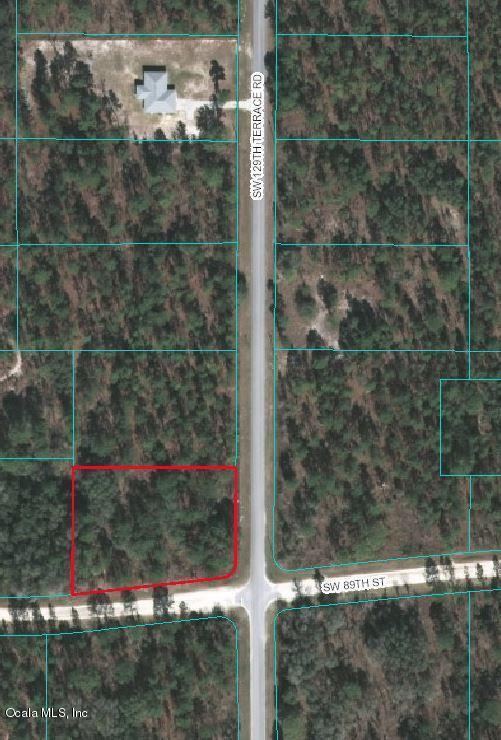 0 SW 129 Terrace, Ocala, FL 34474 (MLS #545091) :: Realty Executives Mid Florida