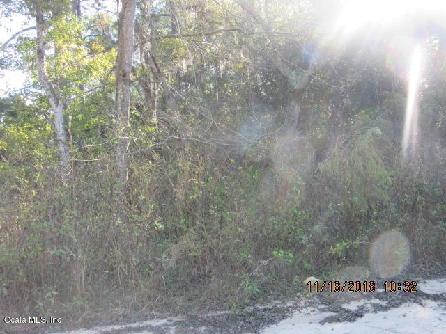 0 SE 179 Avenue, Silver Springs, FL 34488 (MLS #546443) :: Thomas Group Realty