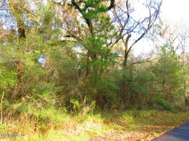 TBD E Lake View Drive, Ocala, FL 34482 (MLS #546891) :: Pepine Realty