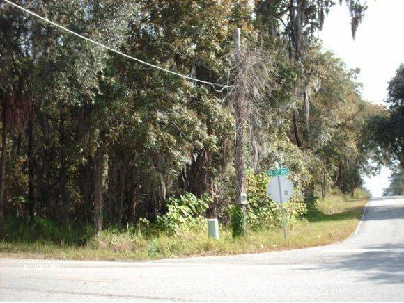 325 SE 24th Street, Ocala, FL 34471 (MLS #547208) :: Pepine Realty