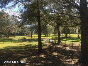 16250 W 329, Reddick, FL 32686 (MLS #547663) :: Realty Executives Mid Florida