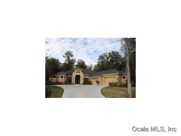 687 SE 47th Loop, Ocala, FL 34480 (MLS #547783) :: Thomas Group Realty