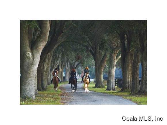 0 SE 26th Court, Ocala, FL 34480 (MLS #547880) :: Realty Executives Mid Florida