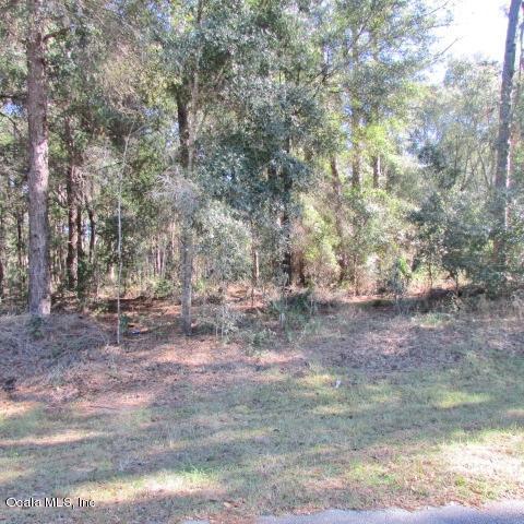 TBD SW 202 Circle, Dunnellon, FL 34431 (MLS #547924) :: Bosshardt Realty