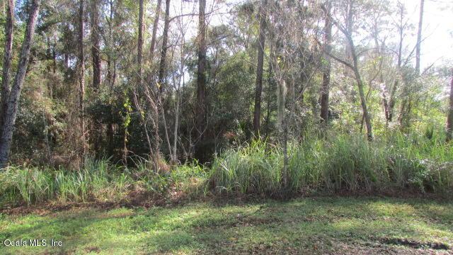TBD SW 95 Place, Dunnellon, FL 34432 (MLS #548636) :: Pepine Realty