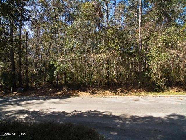 0 SE 43rd Street, Ocala, FL 34480 (MLS #549125) :: Realty Executives Mid Florida