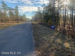 LOT 30 NE 7 Place, Williston, FL 32696 (MLS #549343) :: Realty Executives Mid Florida