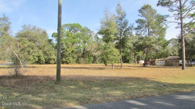 TBD SW 80th Place Road, Dunnellon, FL 34431 (MLS #549395) :: Realty Executives Mid Florida