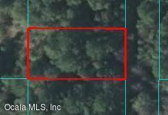 00 SE 43 Terrace, Belleview, FL 34420 (MLS #552512) :: Bosshardt Realty