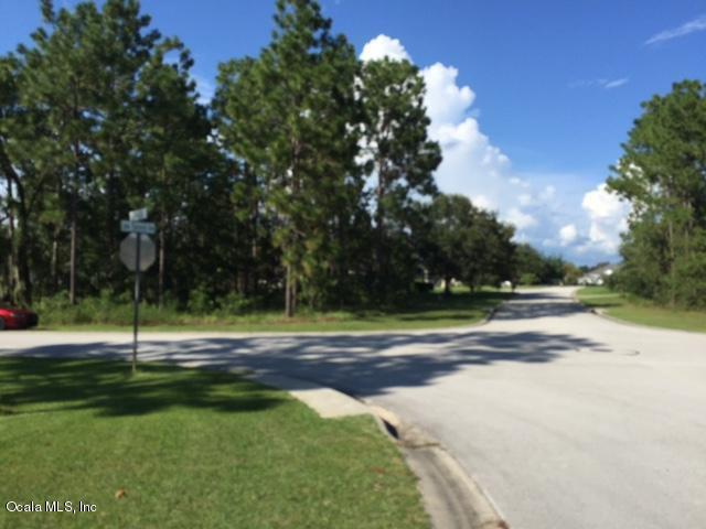 0 Lake Diamond Avenue, Ocala, FL 34472 (MLS #554041) :: Bosshardt Realty