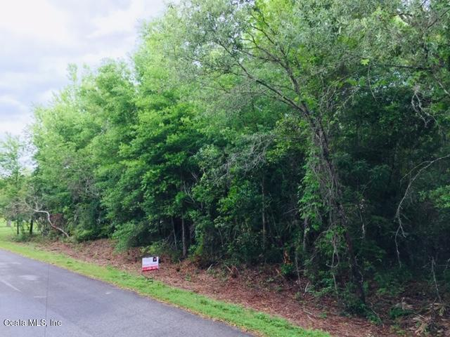 LOT 9 SW Yazoo Court, Dunnellon, FL 34431 (MLS #554350) :: Realty Executives Mid Florida