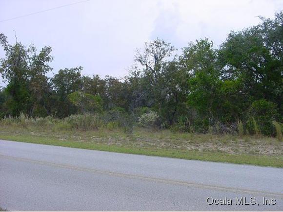 0 NE 136th Avenue, Williston, FL 32696 (MLS #554749) :: Bosshardt Realty
