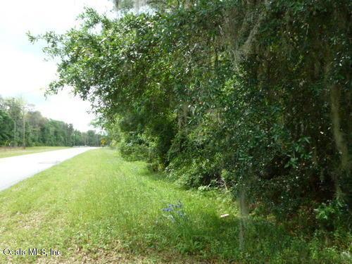 TBD Holden Park Road, Hawthorne, FL 32640 (MLS #556230) :: Bosshardt Realty