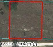 0 SW 29th Lane, Ocala, FL 34481 (MLS #556452) :: Pepine Realty