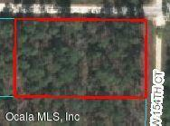0 SW 30th Street, Ocala, FL 34481 (MLS #556464) :: Realty Executives Mid Florida