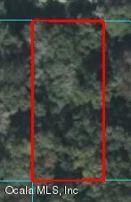 13782 W Hwy 328, Ocala, FL 34482 (MLS #556468) :: Pepine Realty
