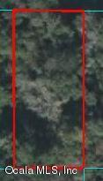 13786 W Hwy 328, Ocala, FL 34482 (MLS #556469) :: Pepine Realty