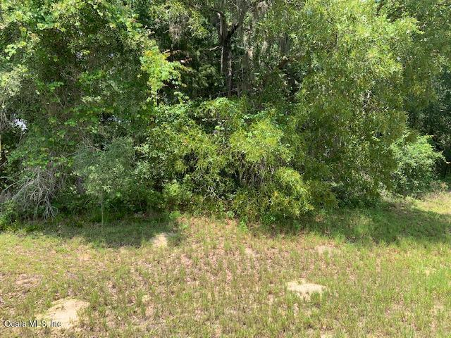 0 SW 40th Circle, Ocala, FL 34473 (MLS #556798) :: Realty Executives Mid Florida