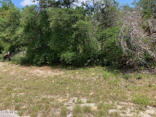0 SW 167th Place, Ocala, FL 34473 (MLS #556804) :: Realty Executives Mid Florida