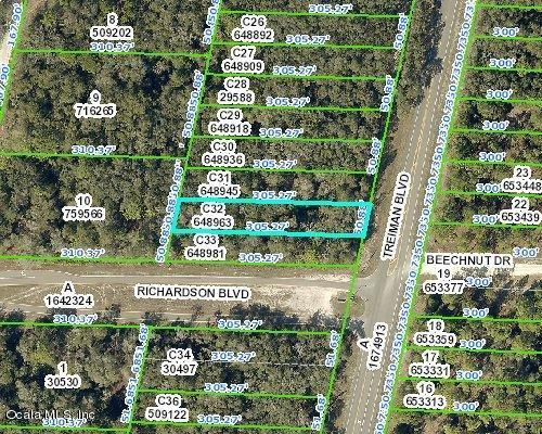 00 Treiman Boulevard, Webster, FL 33597 (MLS #557240) :: Bosshardt Realty