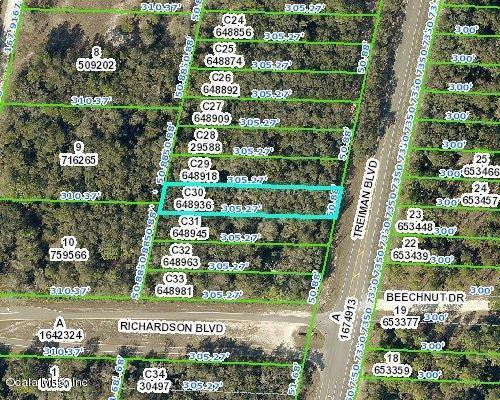 00 Treiman Boulevard, Webster, FL 33597 (MLS #557242) :: Bosshardt Realty