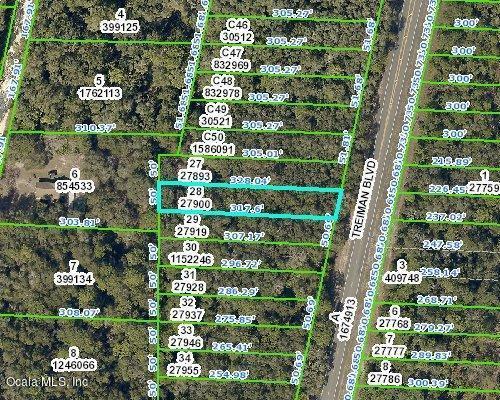 00 Treiman Boulevard, Webster, FL 33597 (MLS #557243) :: Bosshardt Realty