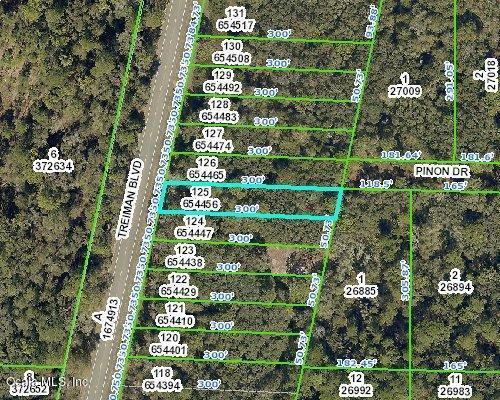 00 Treiman Boulevard, Webster, FL 33597 (MLS #557244) :: Bosshardt Realty