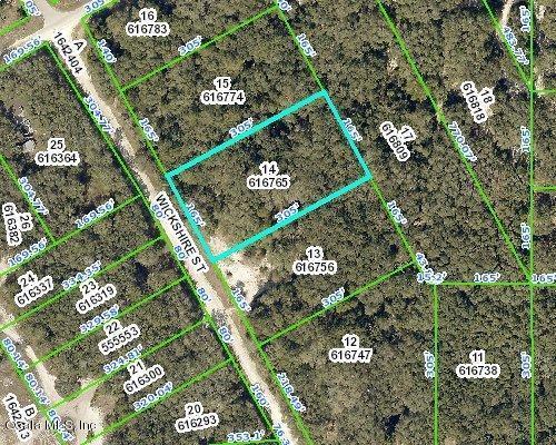 00 Wickshire Street, Webster, FL 33597 (MLS #557311) :: Bosshardt Realty