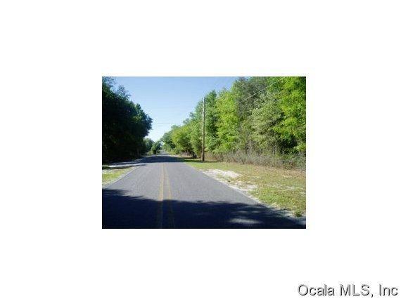TBD NE 150 Avenue, Fort Mccoy, FL 32134 (MLS #558935) :: Pepine Realty