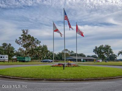13123 SW 41st Place, Ocala, FL 34481 (MLS #559603) :: Globalwide Realty