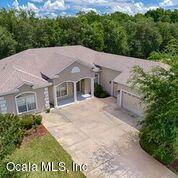 11024 SE 168th Loop, Summerfield, FL 34491 (MLS #559847) :: Bosshardt Realty